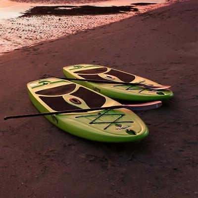 Lifetime 10' Stand Paddle 2-Pack