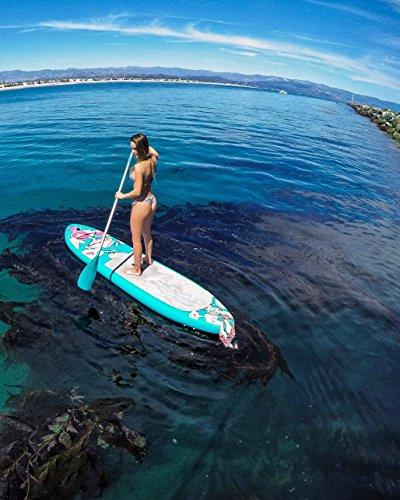 Supflex Edition Stand Paddle Package Board, & Free