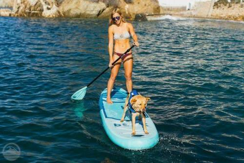"""Peak 10'6"""" All Around Inflatable Up Paddle Board 